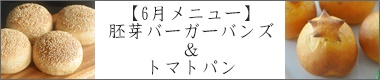 千葉県市川市パン教室 6月メニュー「胚芽バンズ(ホシノ天然酵母)&トマトパン(イースト)」